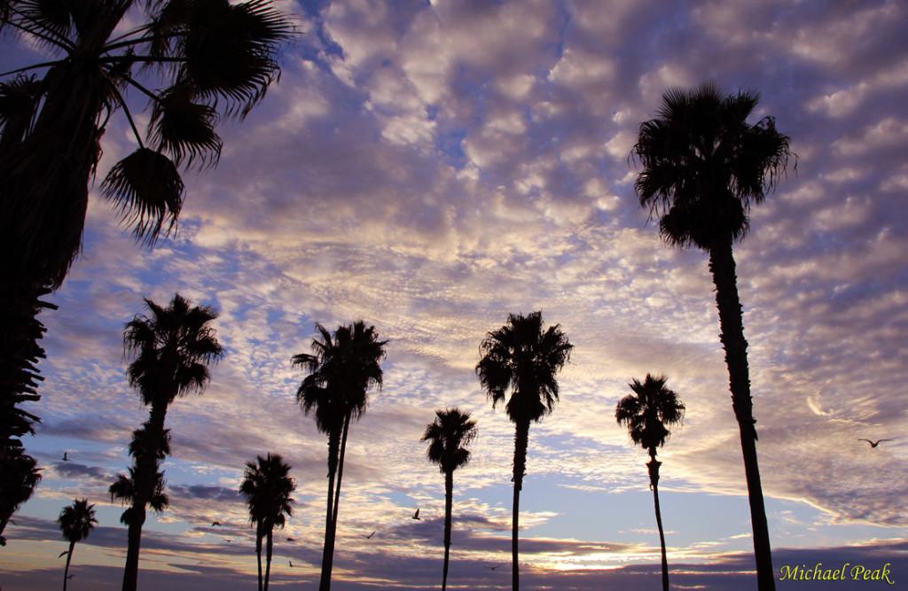 California Skies Sunset